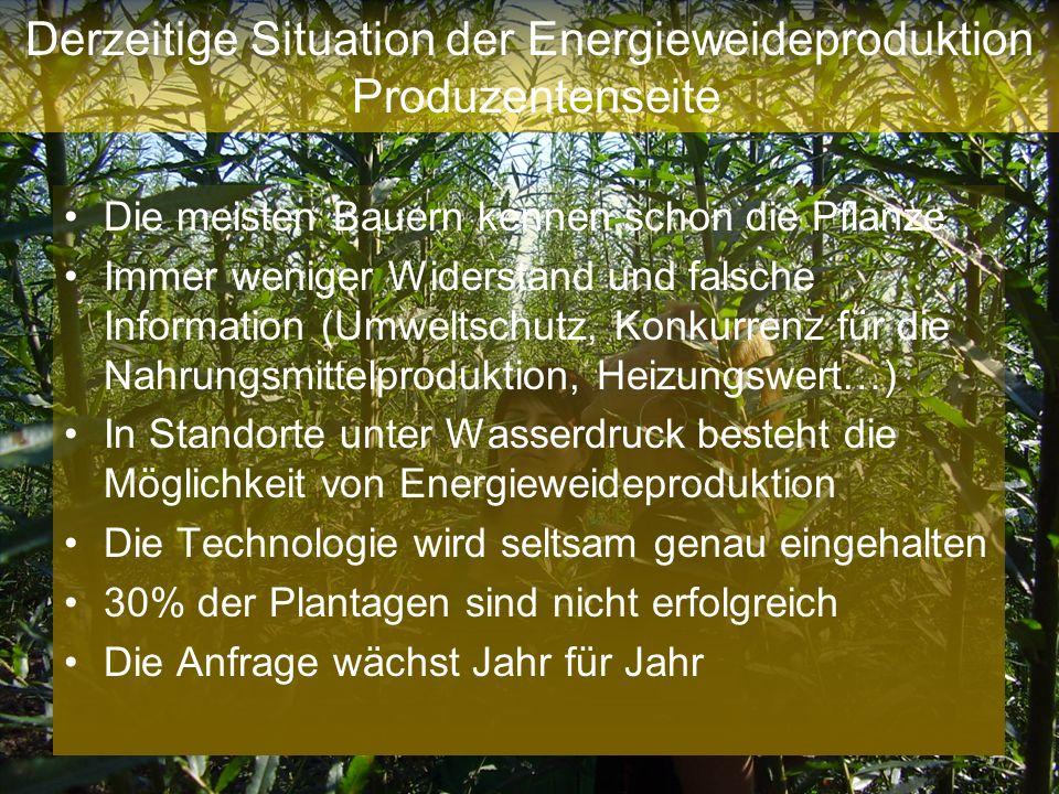 Derzeitige Situation der Energieweideproduktion Produzentenseite