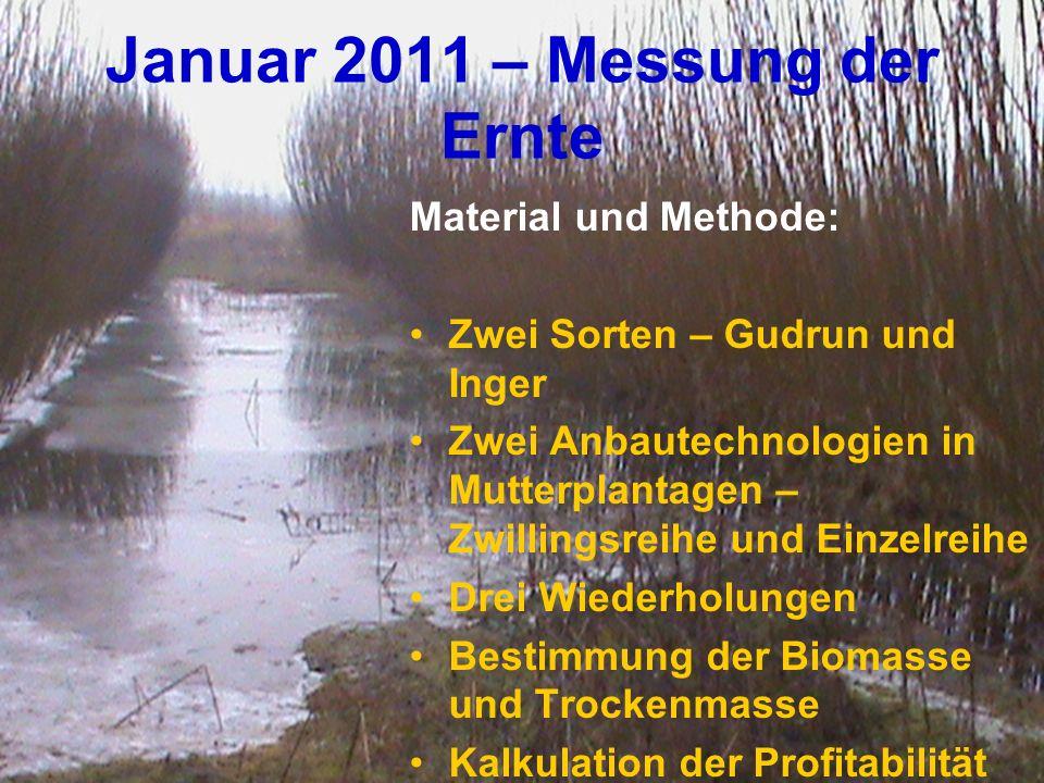 Januar 2011 – Messung der Ernte