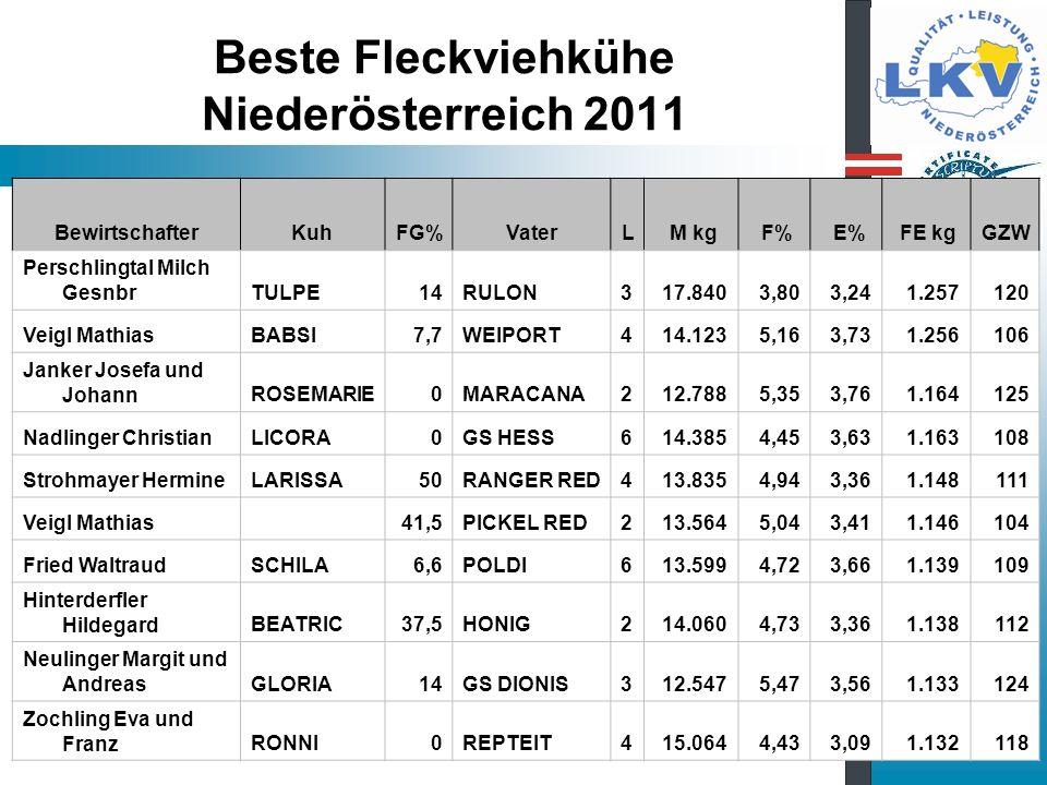 Beste Fleckviehkühe Niederösterreich 2011