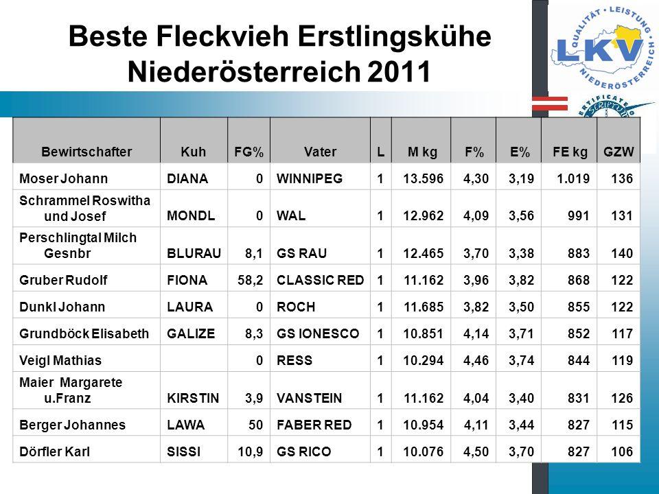 Beste Fleckvieh Erstlingskühe Niederösterreich 2011