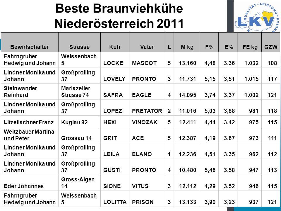 Beste Braunviehkühe Niederösterreich 2011