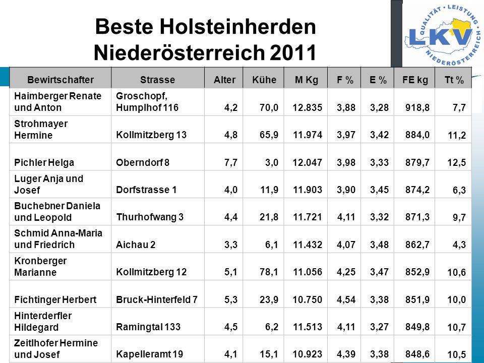 Beste Holsteinherden Niederösterreich 2011