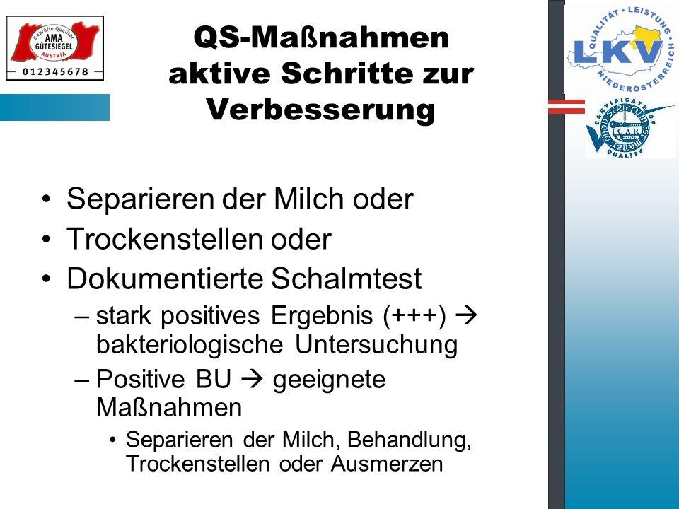 QS-Maßnahmen aktive Schritte zur Verbesserung