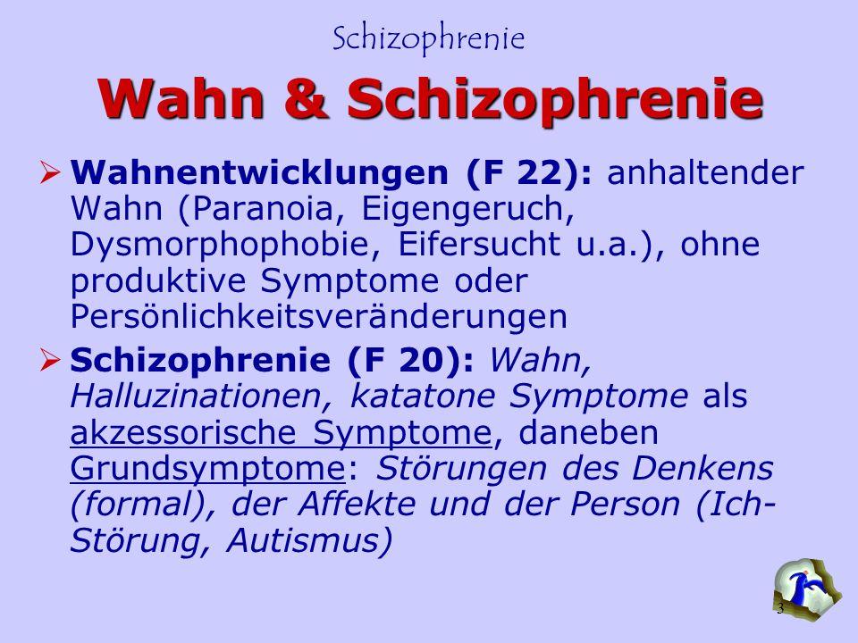 Wahn & Schizophrenie