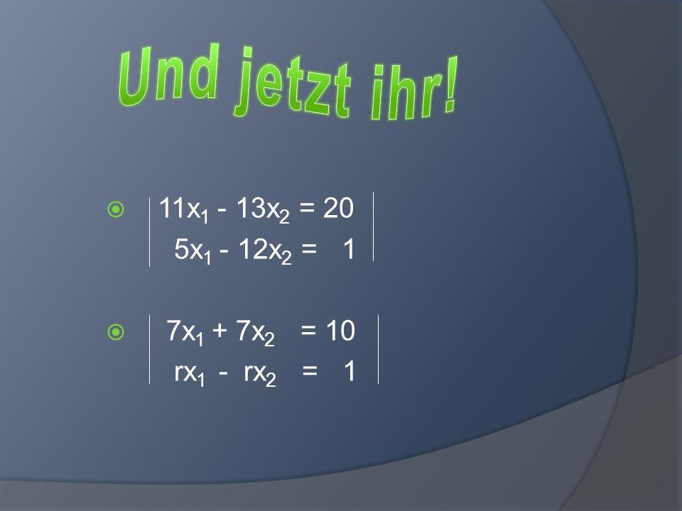 Und jetzt ihr! 11x1 - 13x2 = 20 5x1 - 12x2 = 1 7x1 + 7x2 = 10