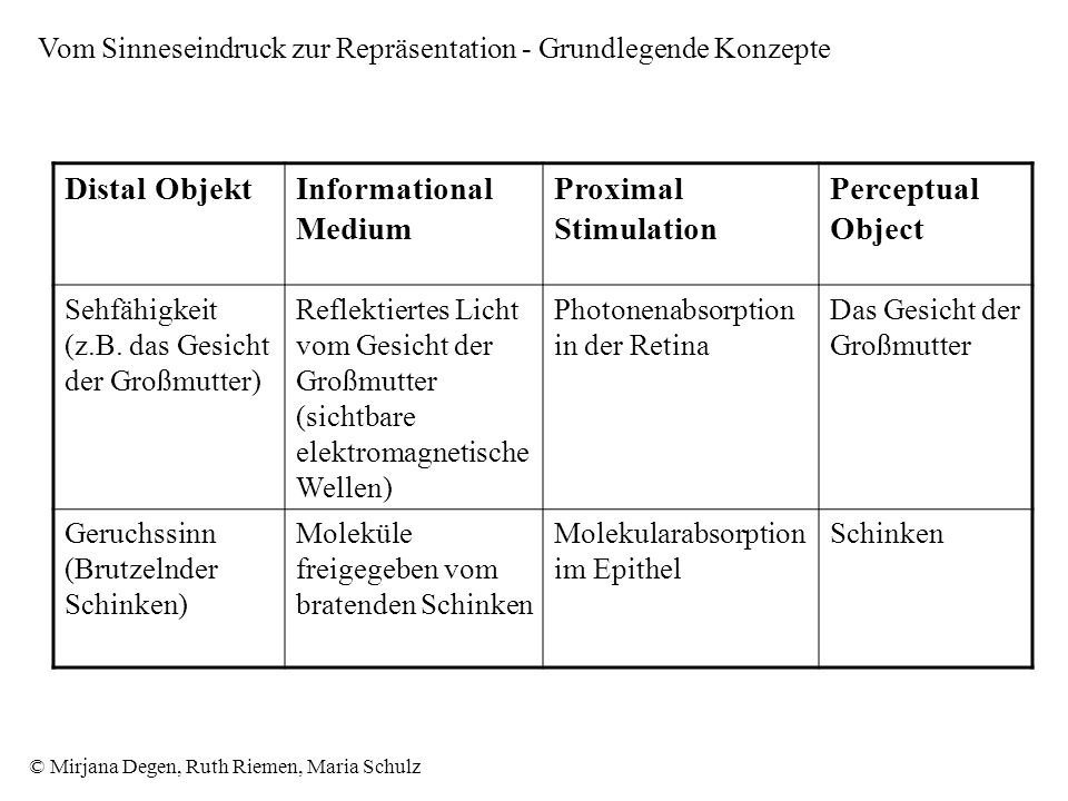 Distal Objekt Informational Medium Proximal Stimulation