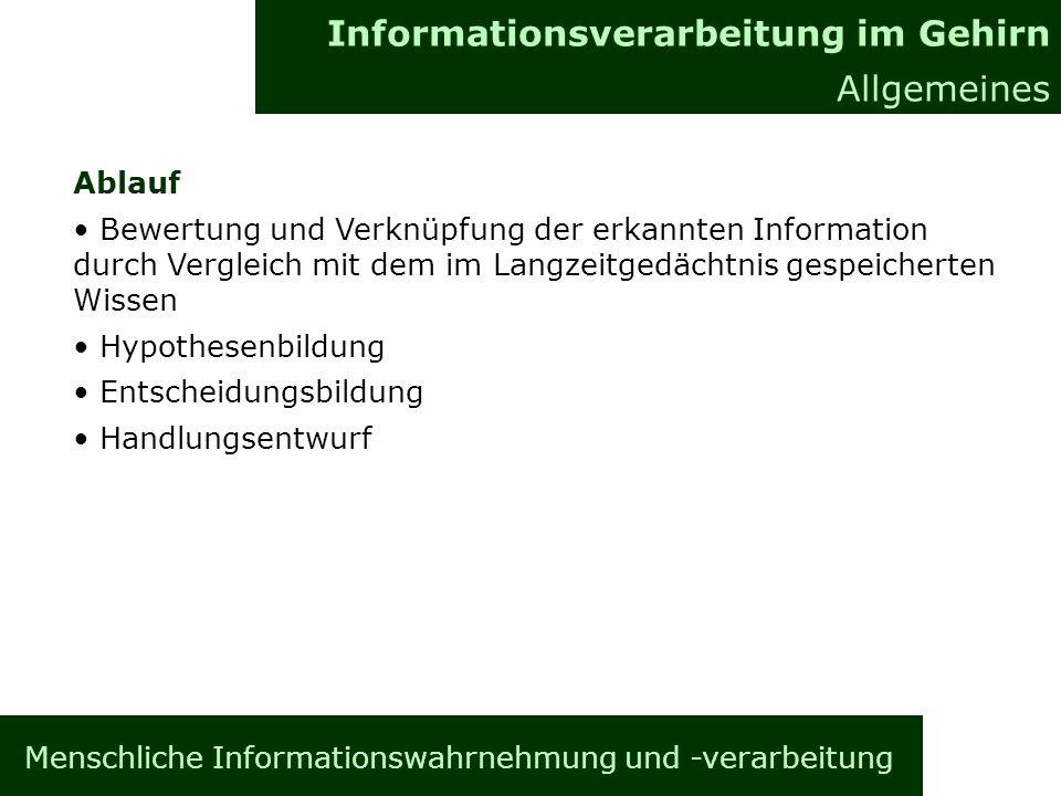 Menschliche Informationswahrnehmung und -verarbeitung