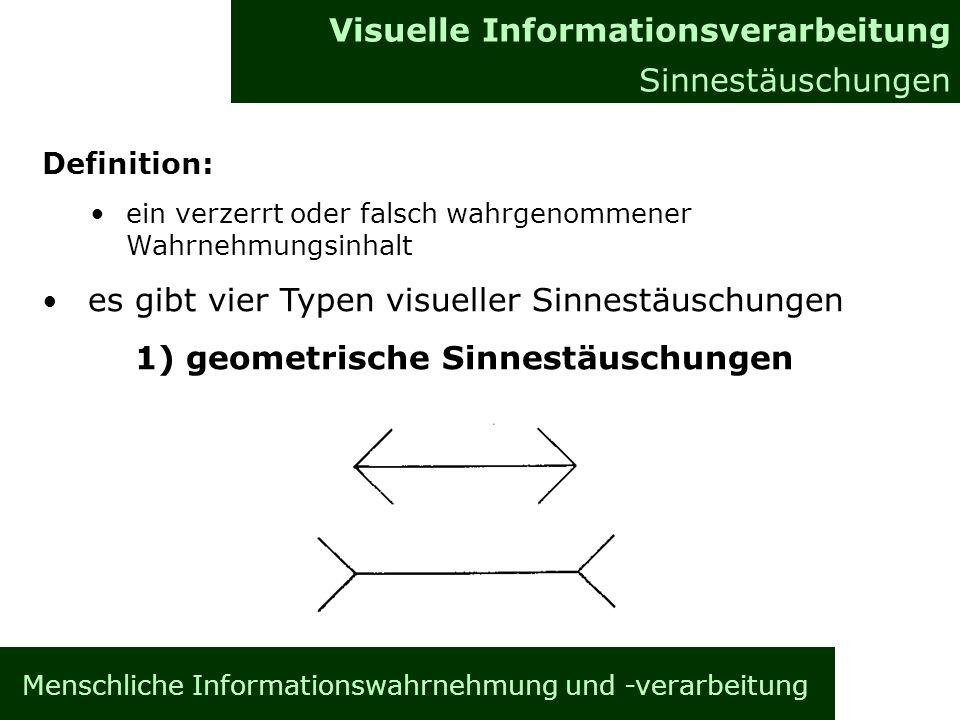Visuelle Informationsverarbeitung Sinnestäuschungen