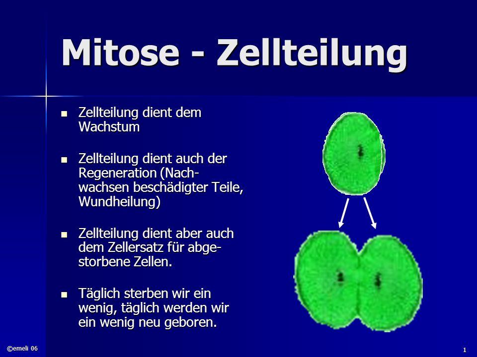 Mitose - Zellteilung Zellteilung dient dem Wachstum