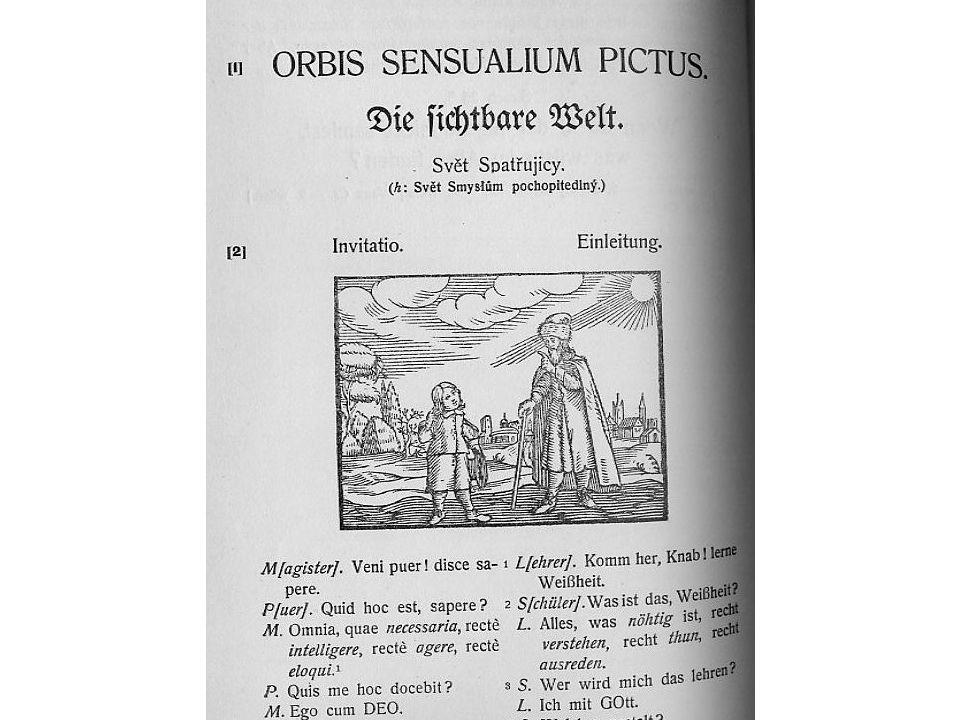 orbis orbis
