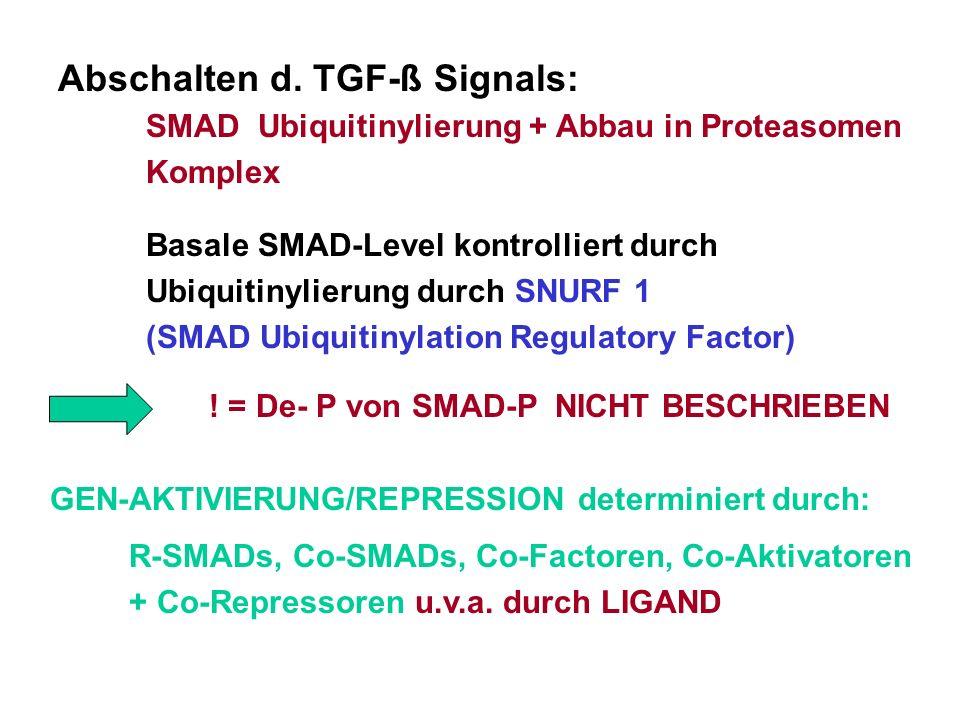 Abschalten d. TGF-ß Signals: