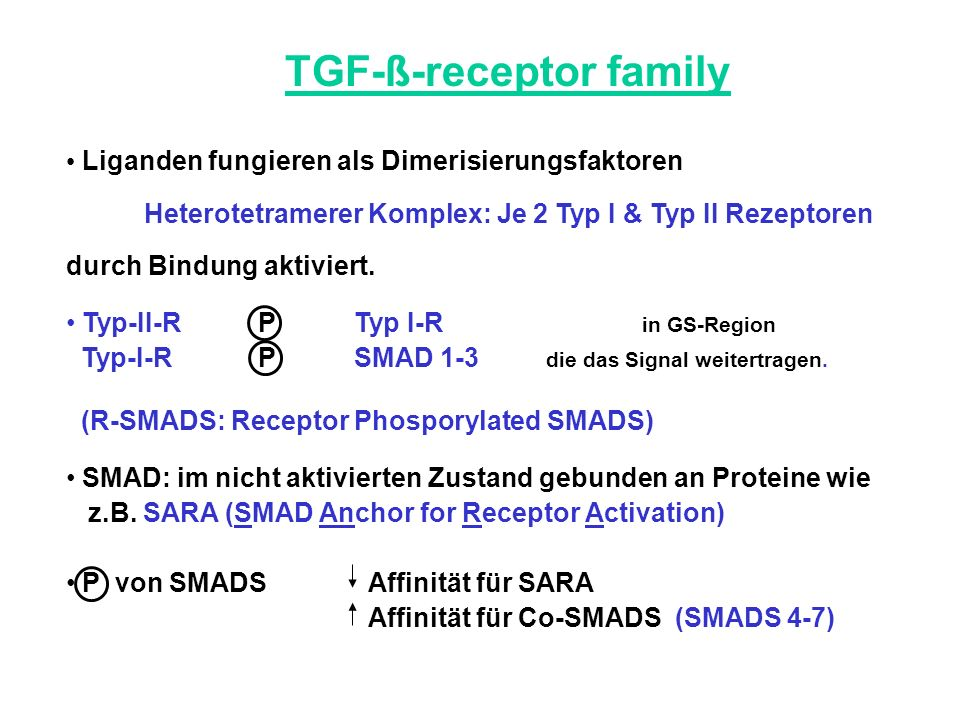 TGF-ß-receptor family