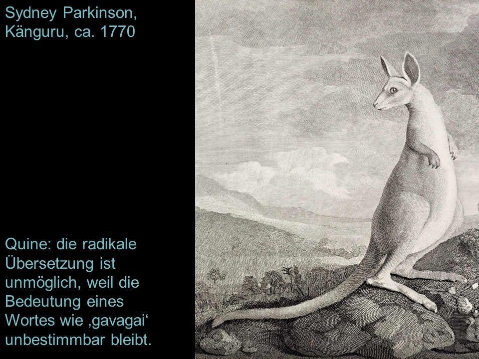 Sydney Parkinson, Känguru, ca. 1770 Quine: die radikale