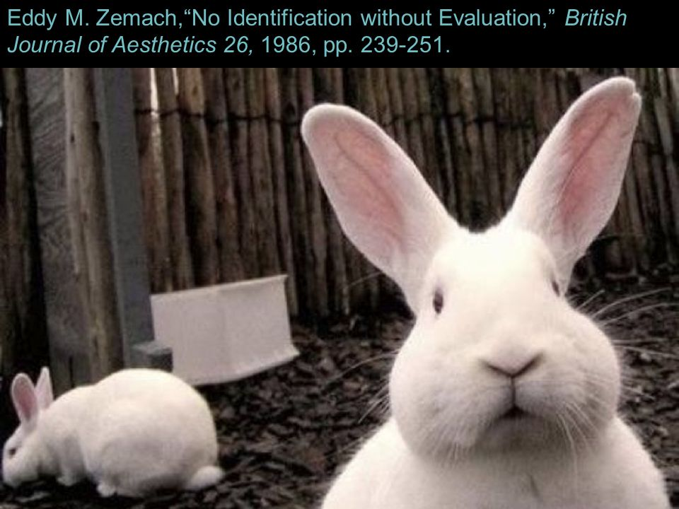 Eddy M. Zemach, No Identification without Evaluation, British Journal of Aesthetics 26, 1986, pp. 239-251.