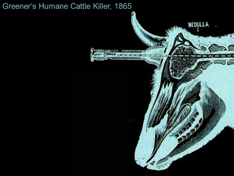 Greener's Humane Cattle Killer, 1865