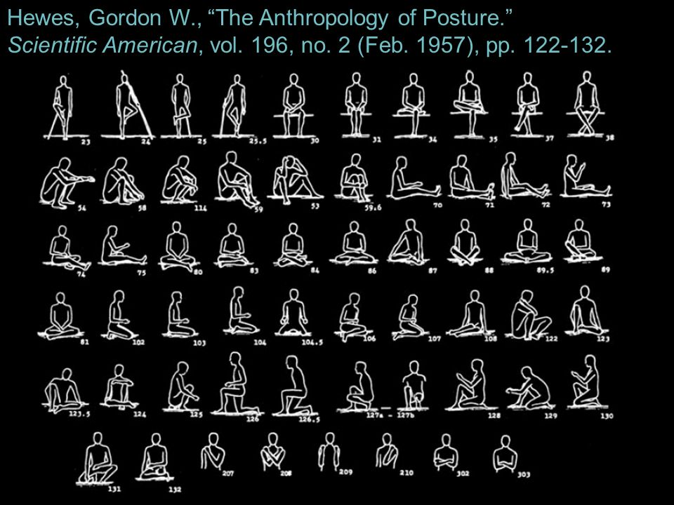 Hewes, Gordon W., The Anthropology of Posture.