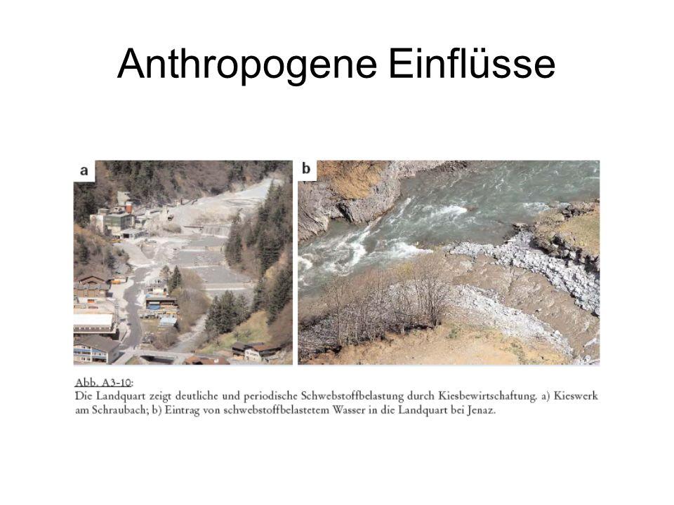 Anthropogene Einflüsse