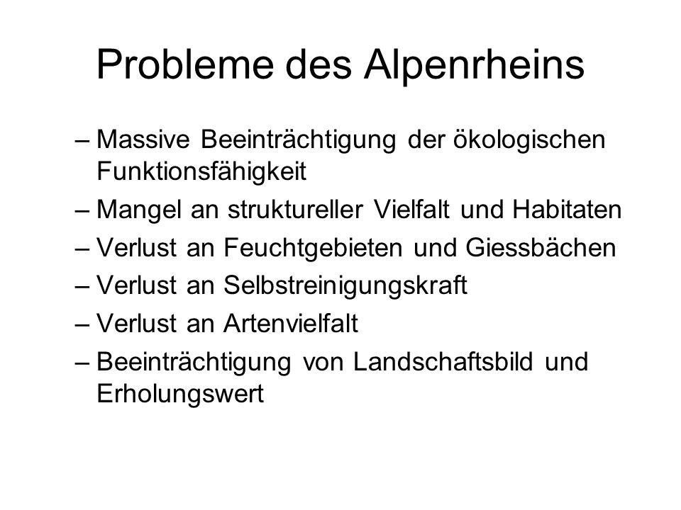 Probleme des Alpenrheins