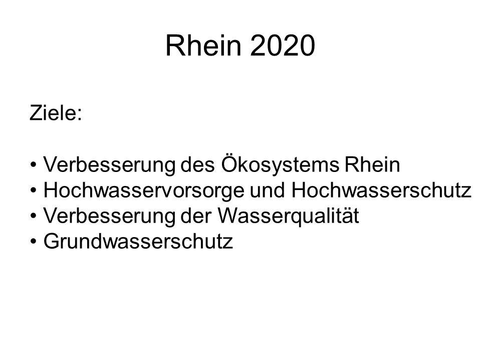 Rhein 2020 Ziele: Verbesserung des Ökosystems Rhein