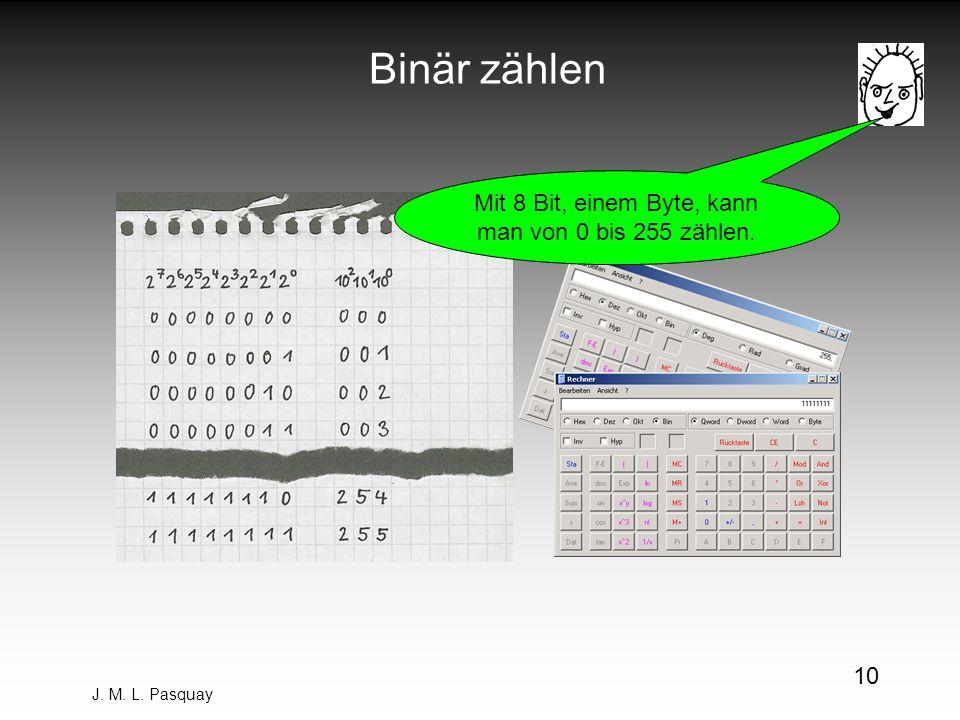 Mit 8 Bit, einem Byte, kann man von 0 bis 255 zählen.