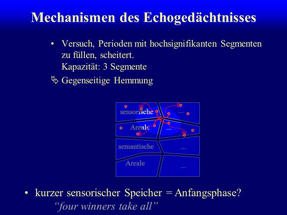 Mechanismen des Echogedächtnisses