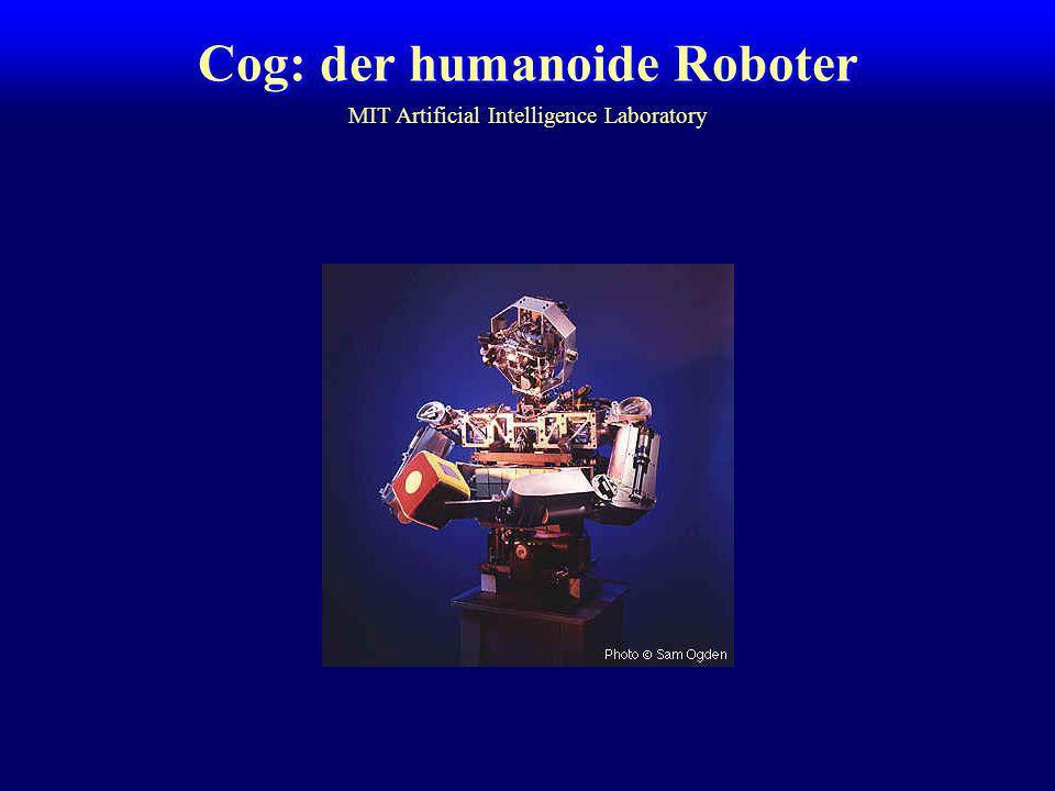 Cog: der humanoide Roboter