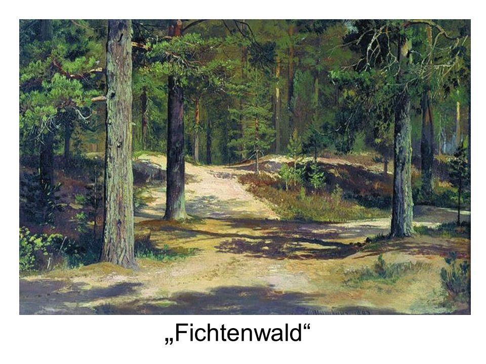 """""""Fichtenwald"""