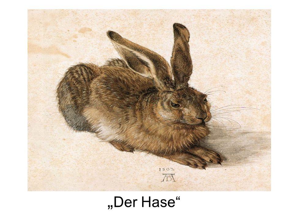 """""""Der Hase"""