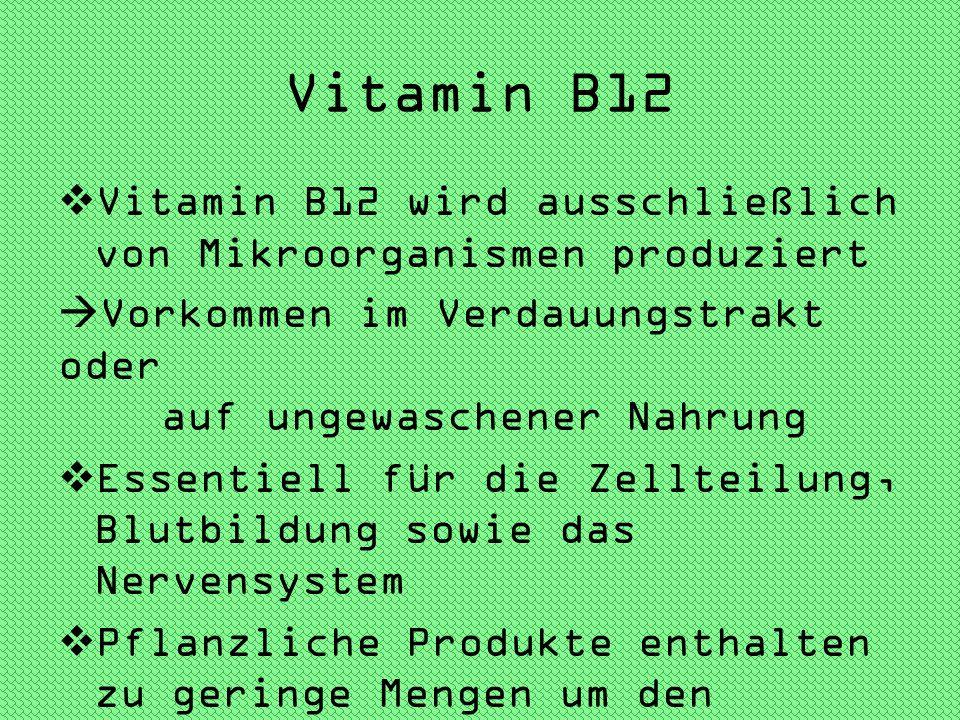 Vitamin B12 Vitamin B12 wird ausschließlich von Mikroorganismen produziert. Vorkommen im Verdauungstrakt oder auf ungewaschener Nahrung.