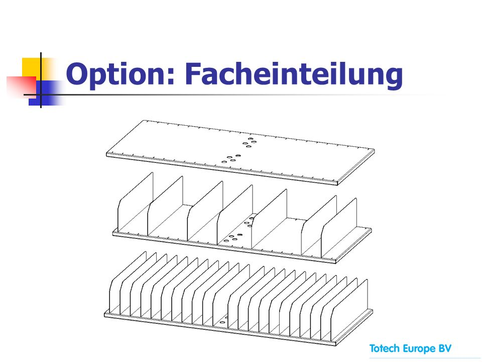 Option: Facheinteilung