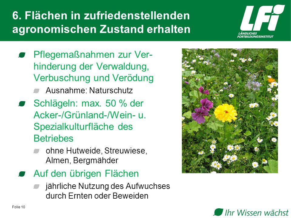 6. Flächen in zufriedenstellenden agronomischen Zustand erhalten