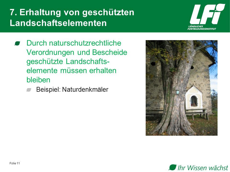7. Erhaltung von geschützten Landschaftselementen