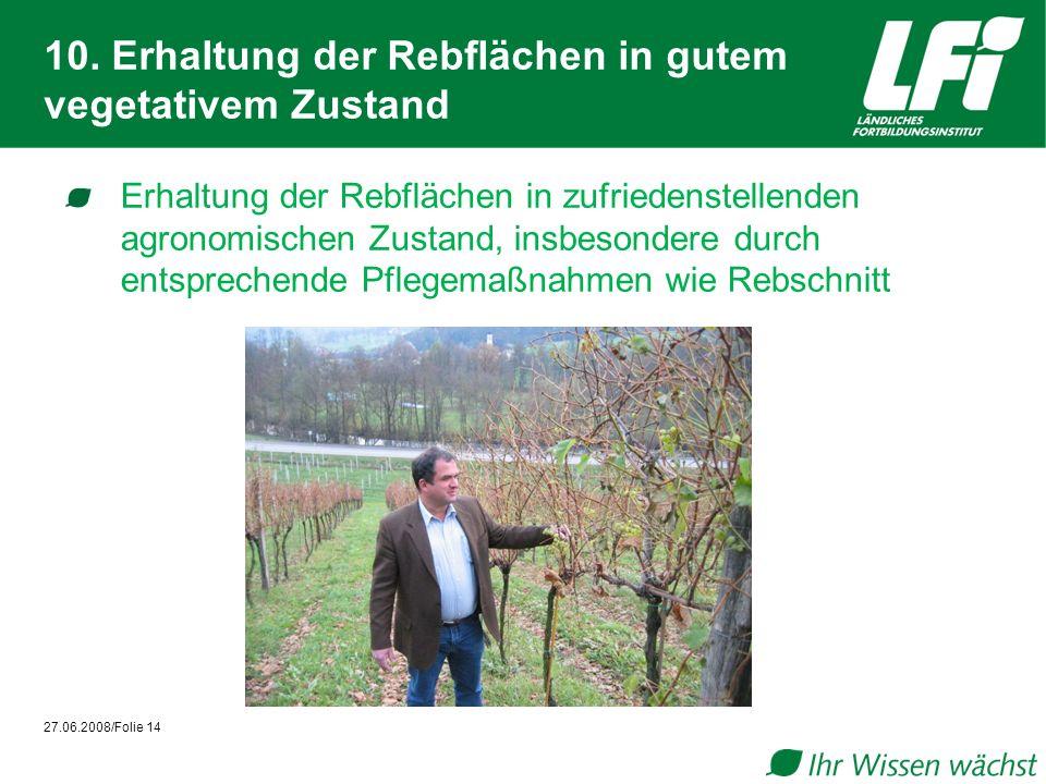 10. Erhaltung der Rebflächen in gutem vegetativem Zustand