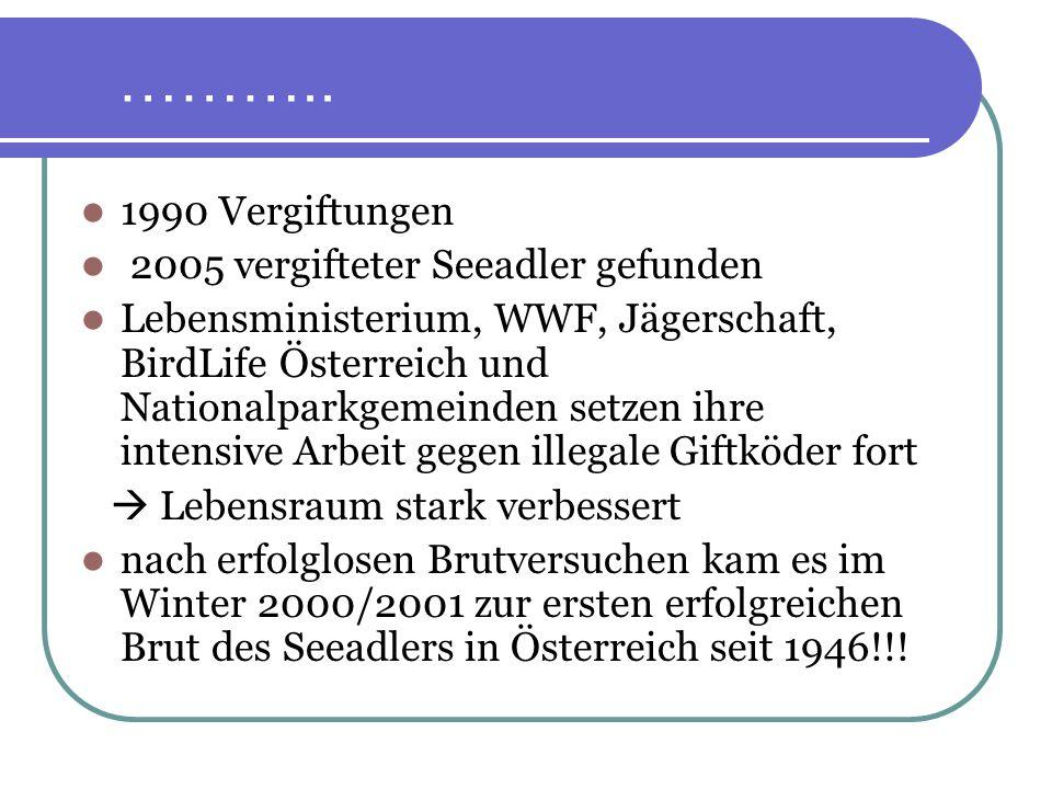 ……….. 1990 Vergiftungen 2005 vergifteter Seeadler gefunden
