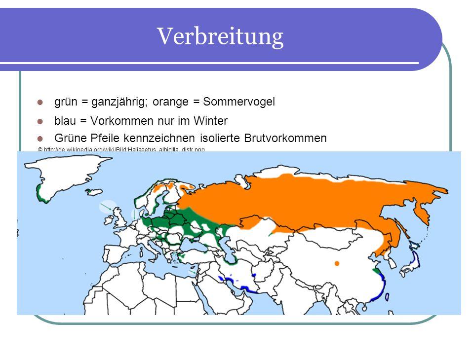 Verbreitung grün = ganzjährig; orange = Sommervogel