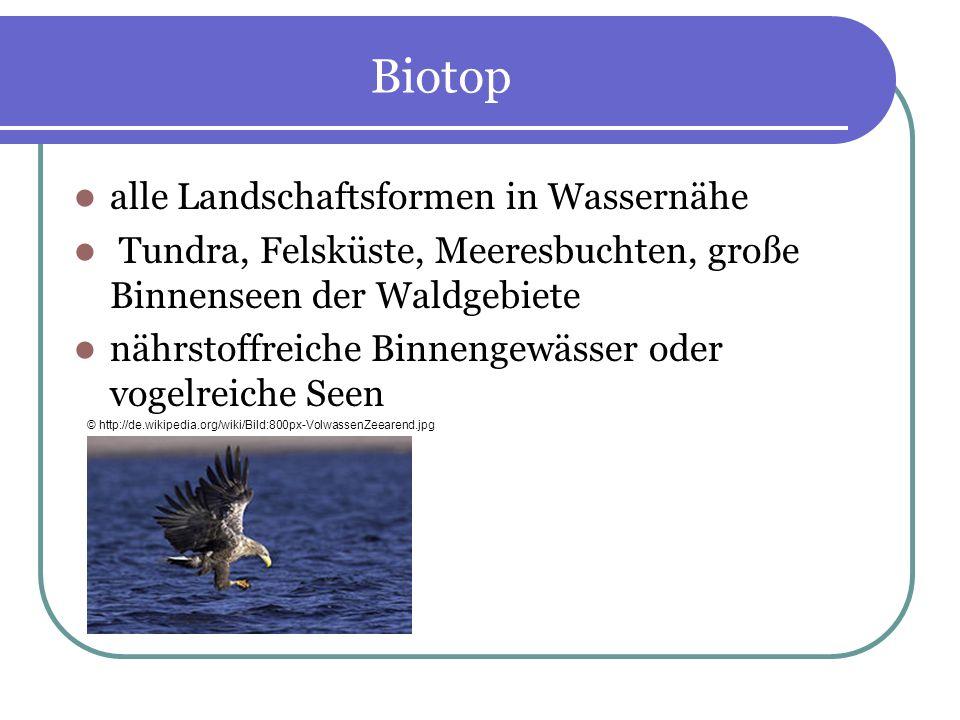 Biotop alle Landschaftsformen in Wassernähe