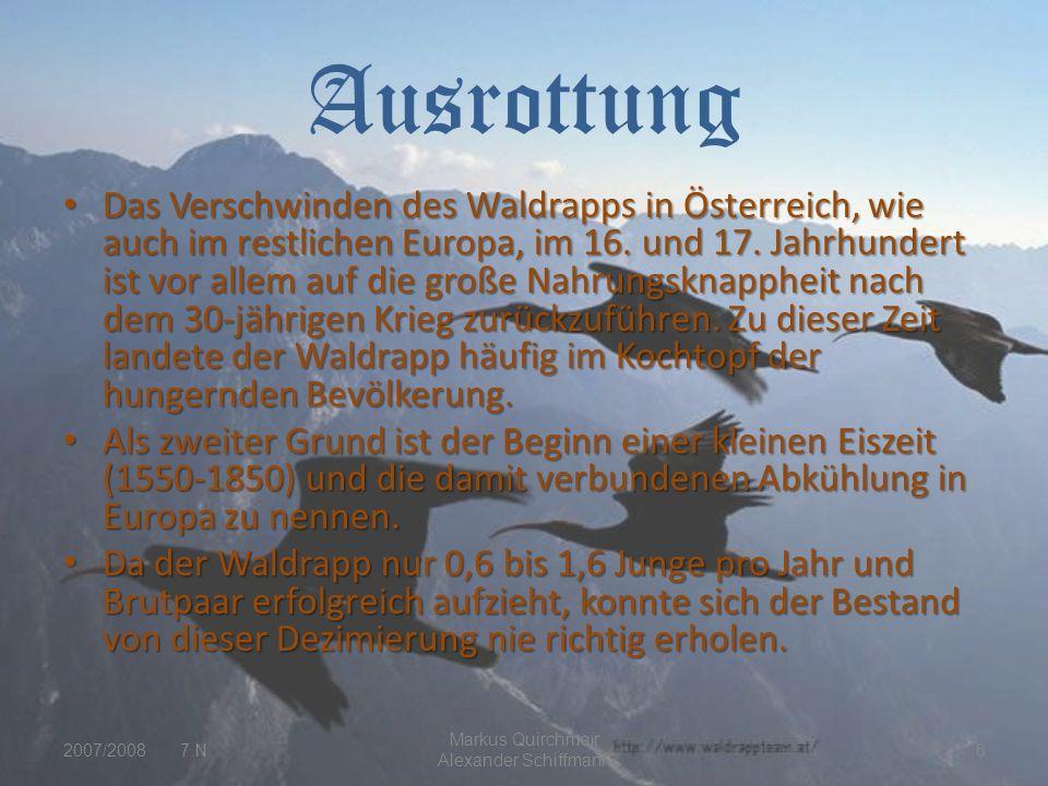 Markus Quirchmair Alexander Schiffmann