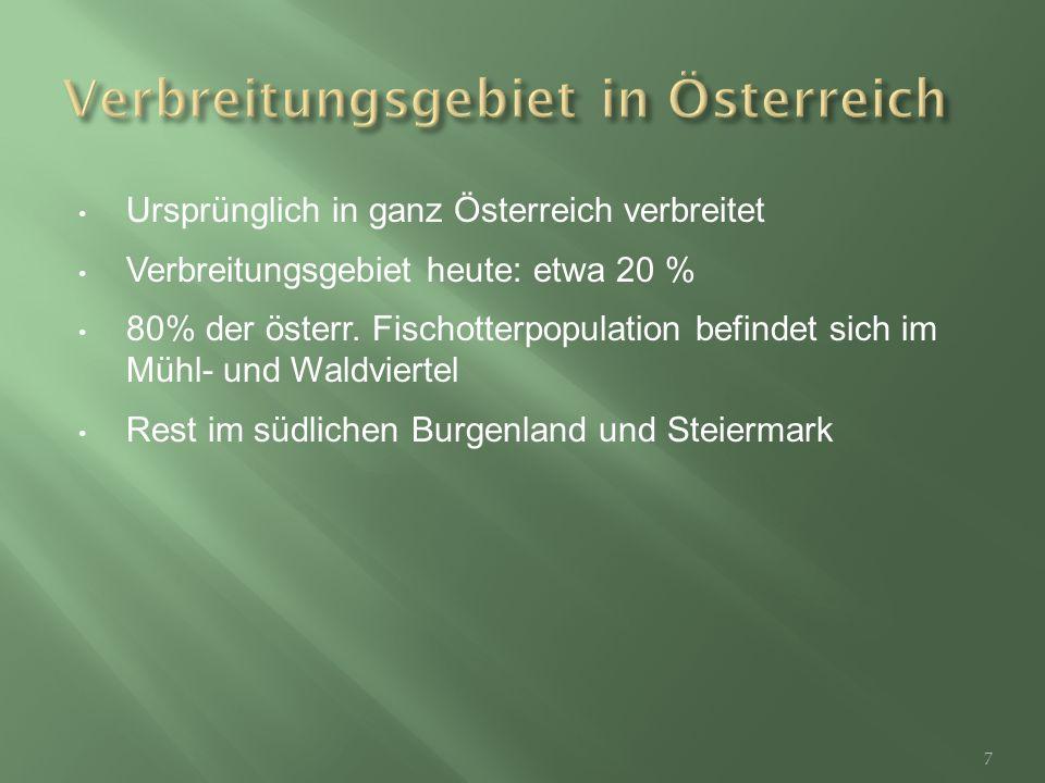 Verbreitungsgebiet in Österreich