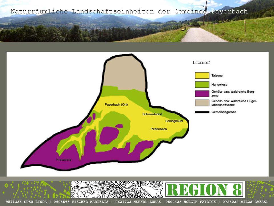 Naturräumliche Landschaftseinheiten der Gemeinde Payerbach