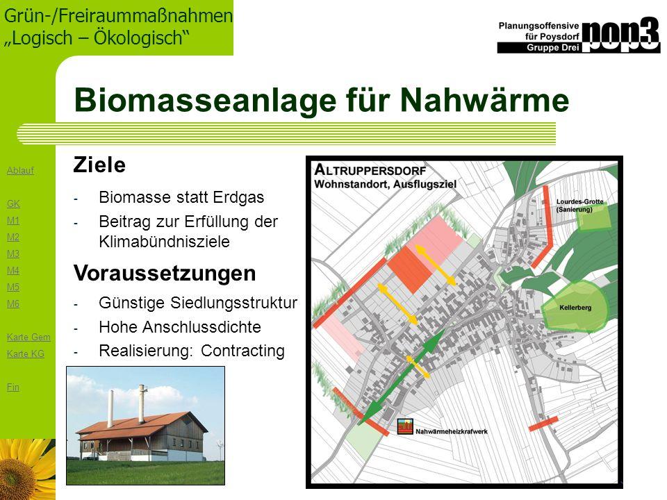 Biomasseanlage für Nahwärme