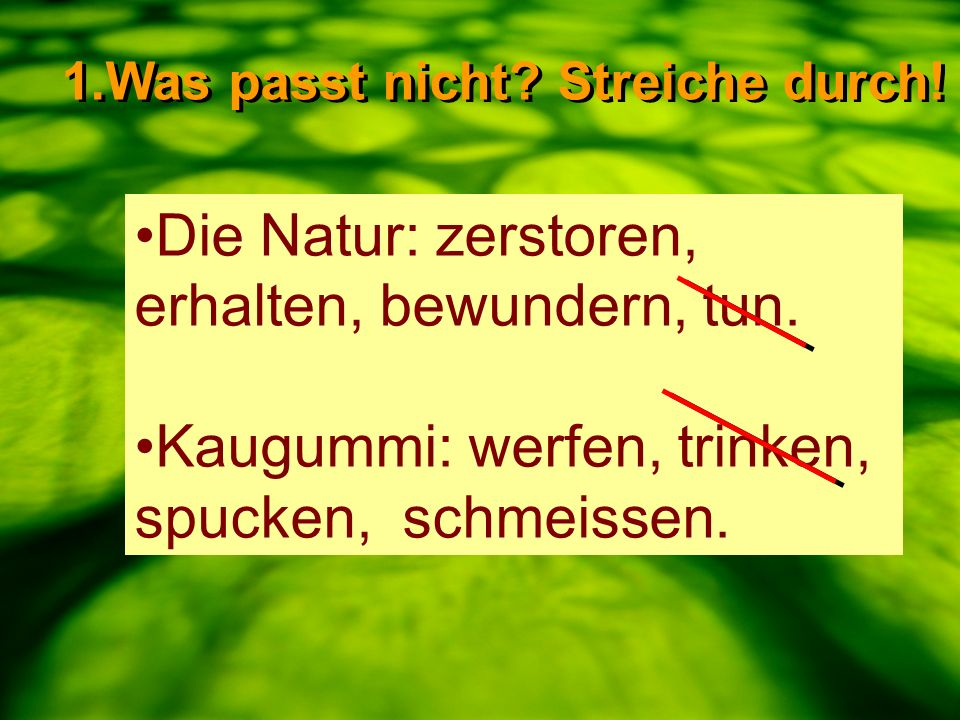Die Natur: zerstoren, erhalten, bewundern, tun.