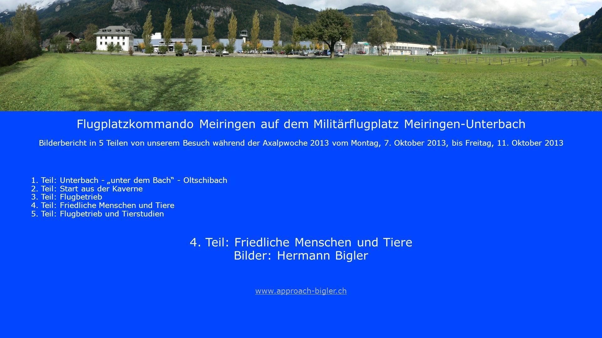 4. Teil: Friedliche Menschen und Tiere Bilder: Hermann Bigler