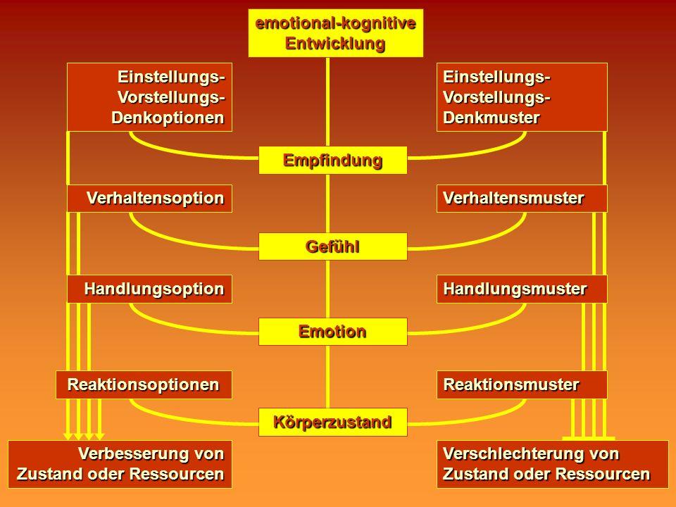 emotional-kognitive Entwicklung