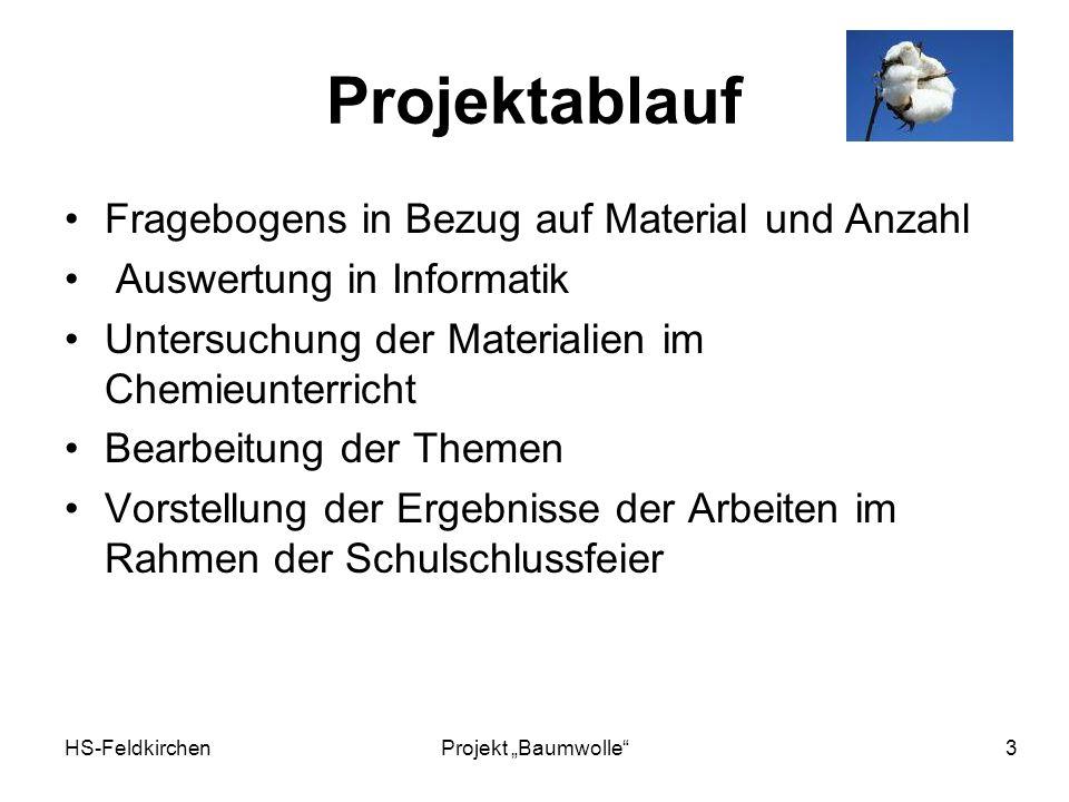 Projektablauf Fragebogens in Bezug auf Material und Anzahl