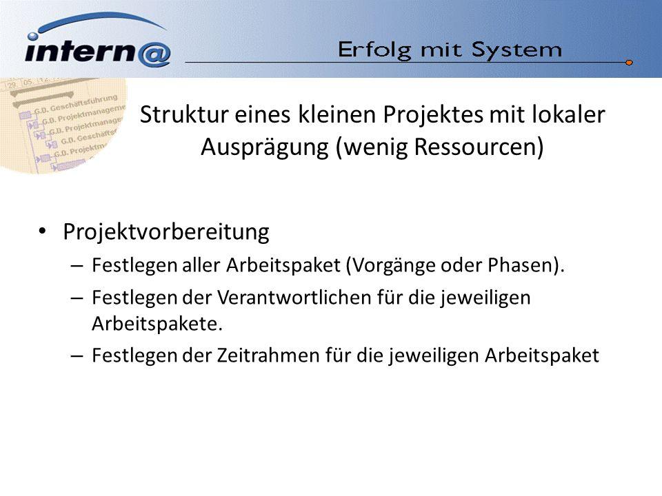 Struktur eines kleinen Projektes mit lokaler Ausprägung (wenig Ressourcen)