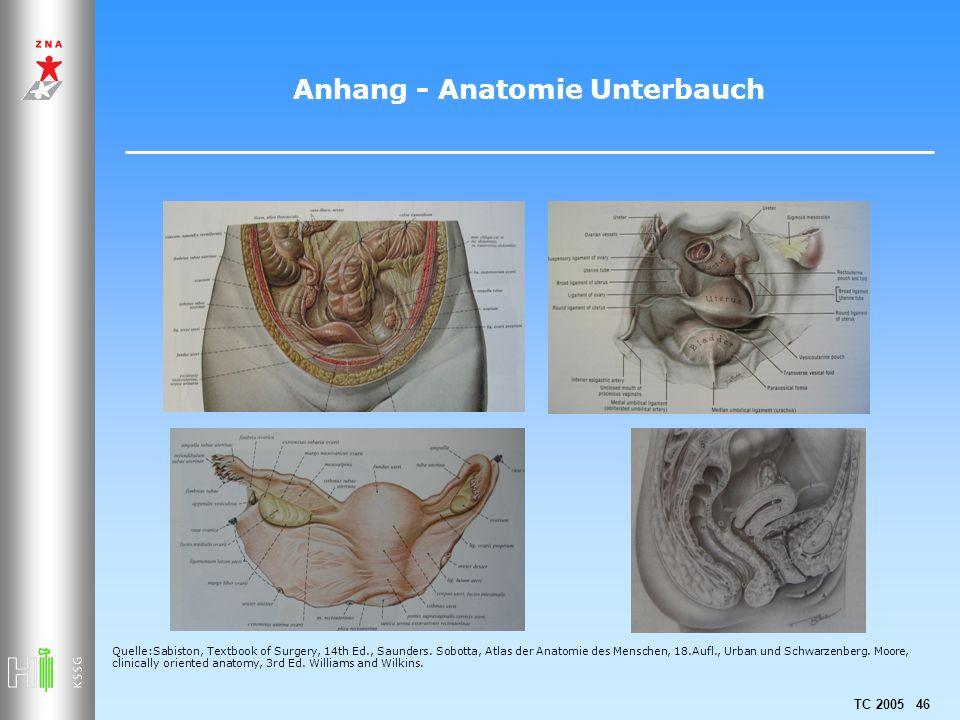 Anhang - Anatomie Unterbauch