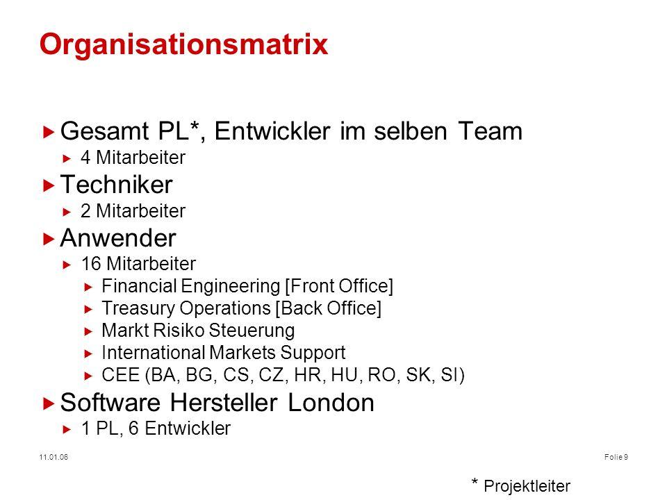 Organisationsmatrix Gesamt PL*, Entwickler im selben Team Techniker