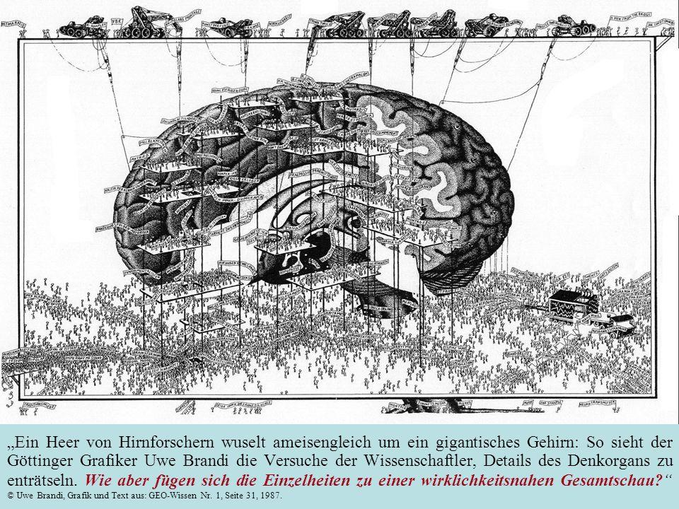 Dia mit freundlicher Genehmigung von GEO-Wissen und © Uwe Brandi (Brief vom 8. Mai 2004)