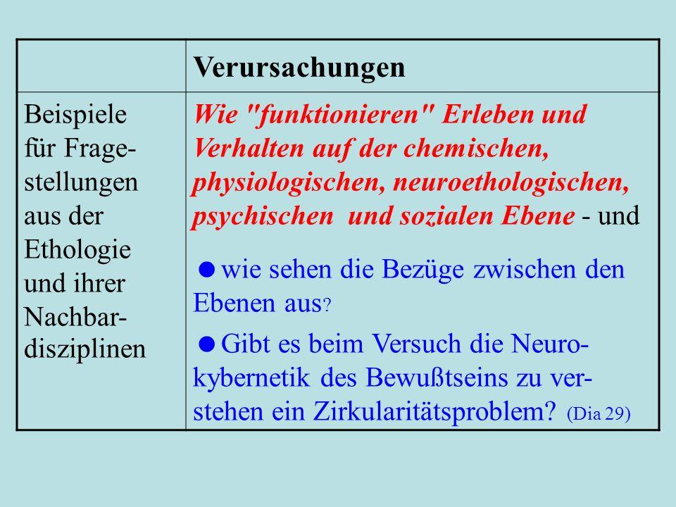 Verursachungen Beispiele für Frage-stellungen aus der Ethologie und ihrer Nachbar-disziplinen.