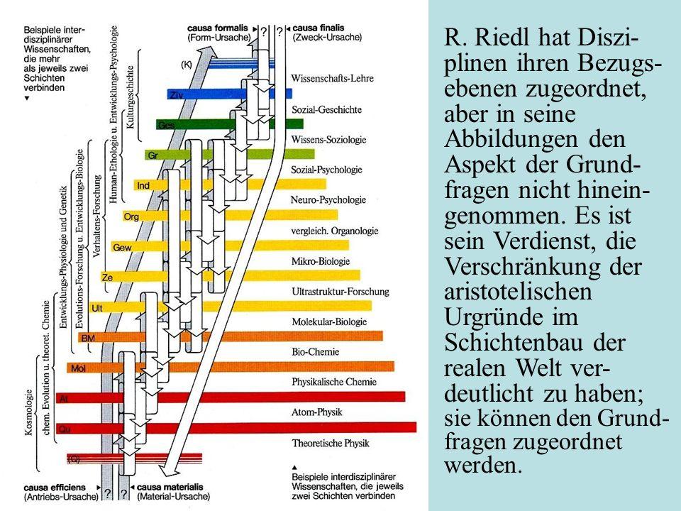 R. Riedl hat Diszi-plinen ihren Bezugs-ebenen zugeordnet, aber in seine Abbildungen den Aspekt der Grund-fragen nicht hinein-genommen. Es ist sein Verdienst, die Verschränkung der aristotelischen Urgründe im Schichtenbau der realen Welt ver-deutlicht zu haben; sie können den Grund-fragen zugeordnet werden.